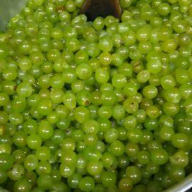 季節の果物ピュレ・ソーダ割り